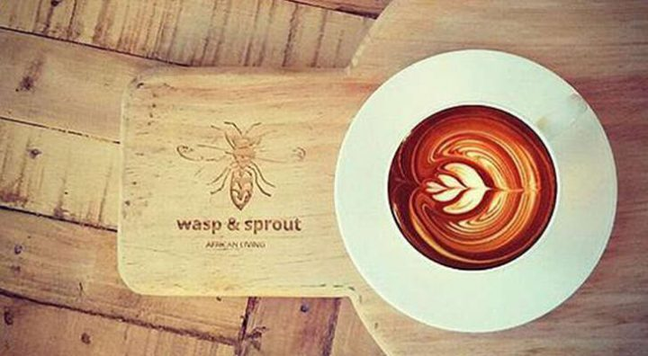 Wasp and Sprout