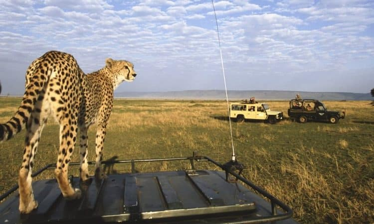 Maasai Mara National Reserve